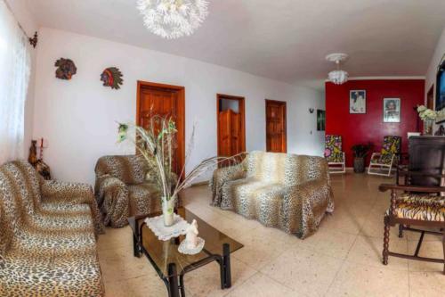 Cienf Villa Maria Salone