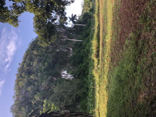 Escursione lunga 2 Viñ-Levisa9